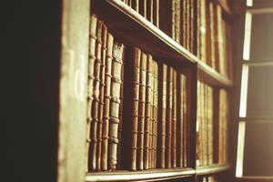 books by loLO-o