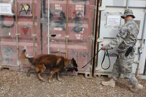 Air Force Working Dog by KuManu