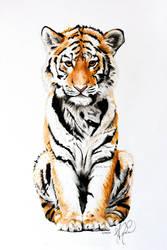 Tiger Rising by Koinos