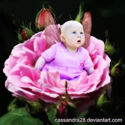 Little Rose by Cassandra28