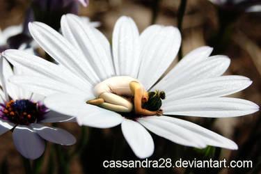 Daisy by Cassandra28