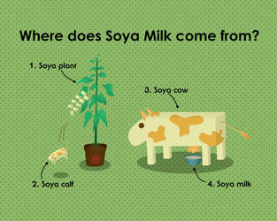 Where does Soya Milk come from by elsalee