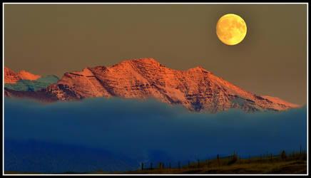 Moonlight at Bison Range by jabroyles