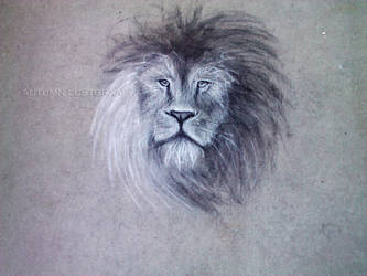 Lion Chalk Drawing by Fallunleashed