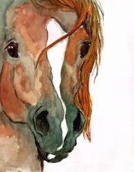 Arab horse head by mammakats