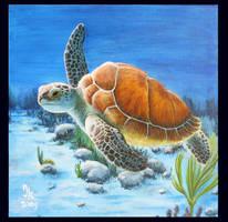 Turtle by Neercs-eman