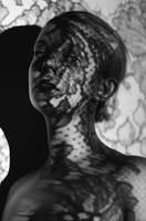 Lace by Anselmeth