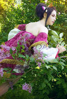 Samurai Warriors: Blossom by alberti