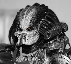 more predator... by iytj