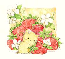 strawberries by Melonkitten