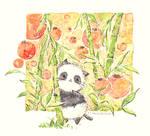 panda by Melonkitten
