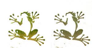 Frog Prints by melukilan