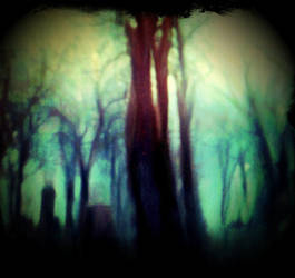 Once Upon A Forrest Eve by intao