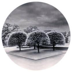 Secret Garden by intao
