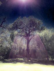 Rainbow Tree 2 by intao