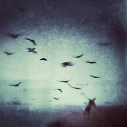 Freedom Song by intao