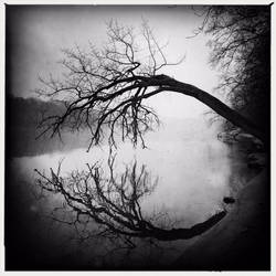 Circular Stillness by intao