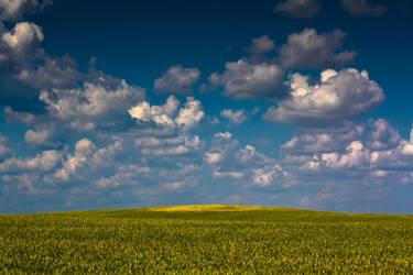 Summer fields by JustV23