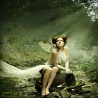 Fairy Forrest by LittlePurpleBee