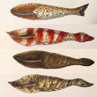 Silurian Cyathaspidid Fish by PrehistoryByLiam
