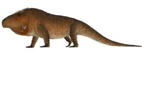 Erythrosuchus by PrehistoryByLiam
