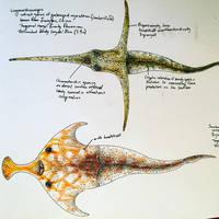 Lungmenshanaspis and Sanchaspis by PrehistoryByLiam
