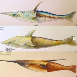 Devonian Pteraspidomorphs by PrehistoryByLiam