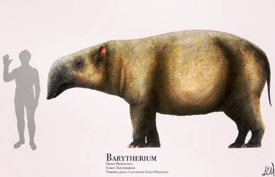Barytherium by PrehistoryByLiam
