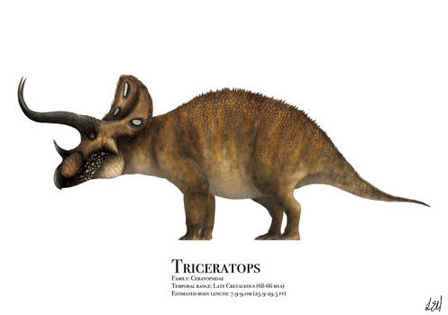 Triceratops by PrehistoryByLiam