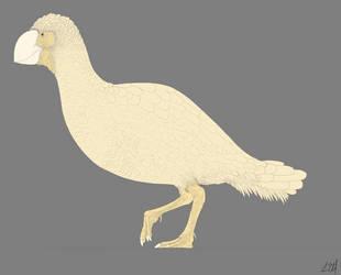 Gastornis Line Drawing by PrehistoryByLiam