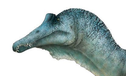 Spinosaurus Head Detail by PrehistoryByLiam