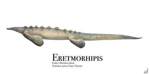 Eretmorhipis by PrehistoryByLiam