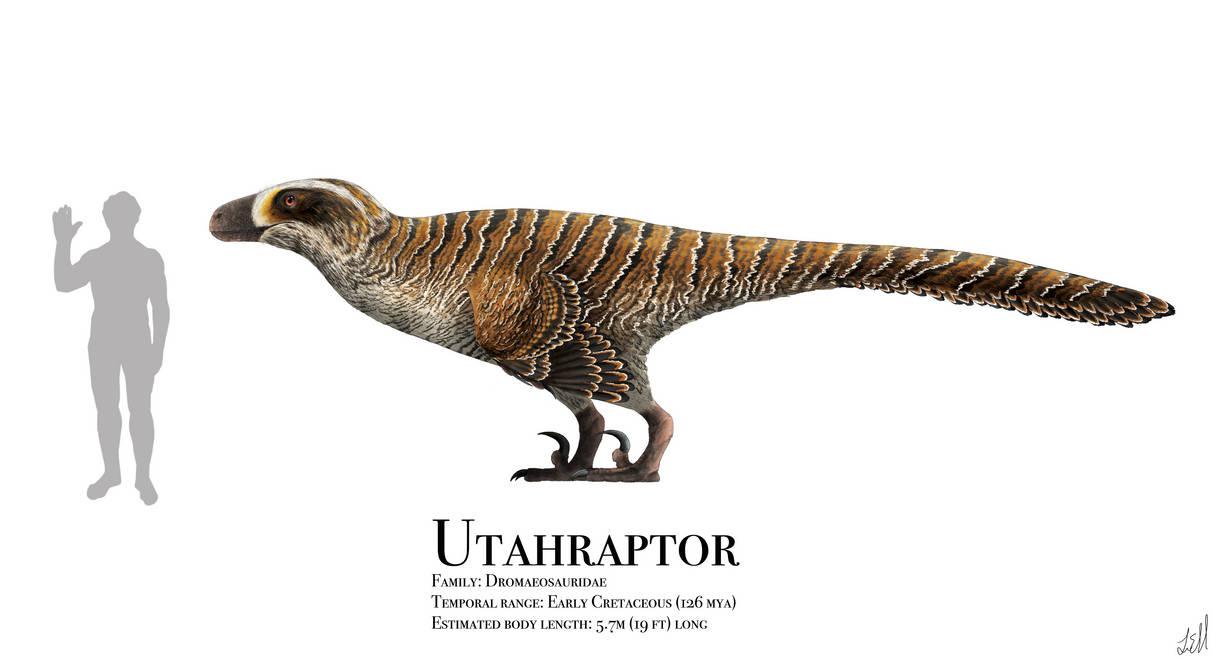 Utahraptor By Prehistorybyliam On Deviantart