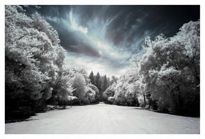 El Color de un Cielo Nuevo by 1uno