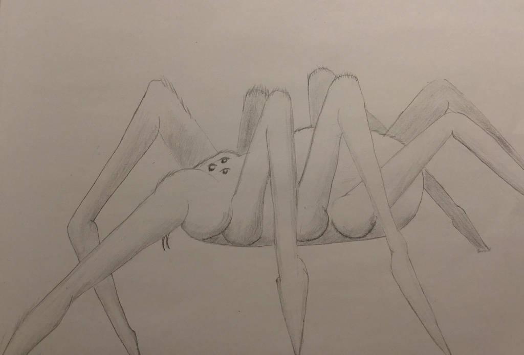 Spider  by squidofgiants