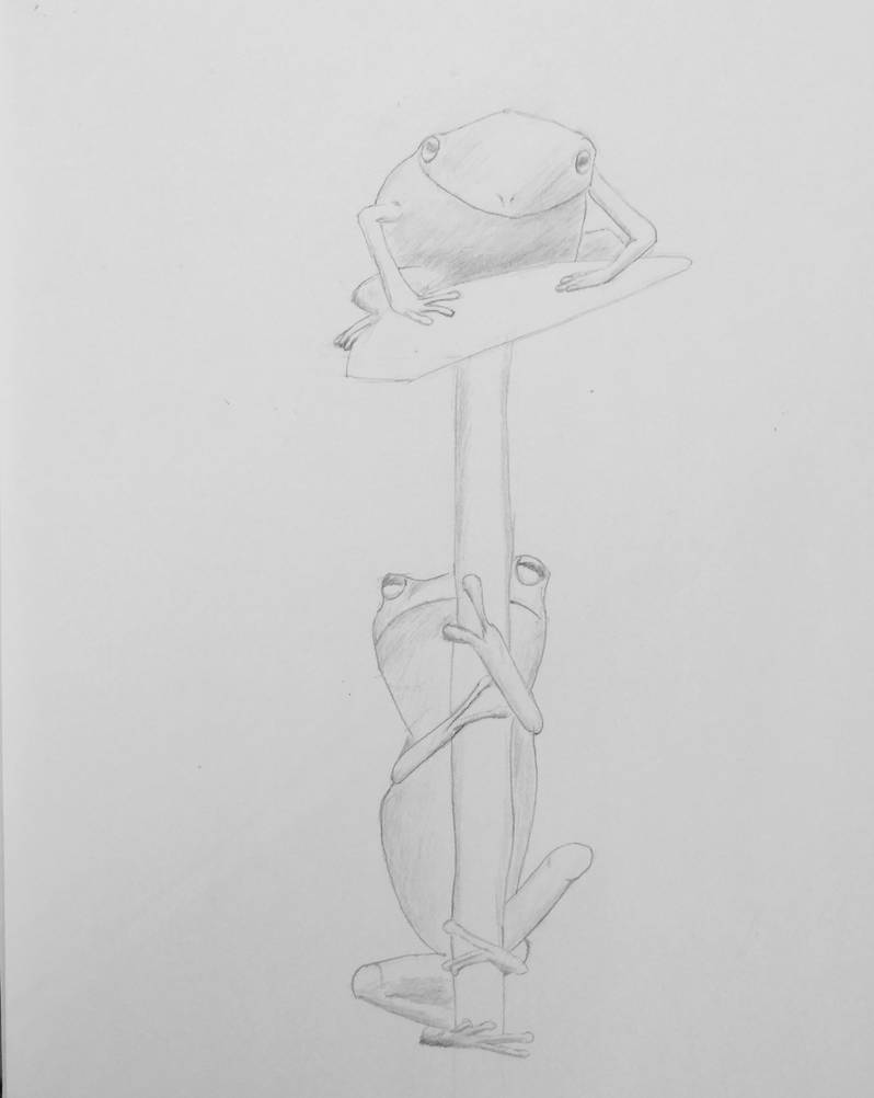 Tree Frog sketch by squidofgiants