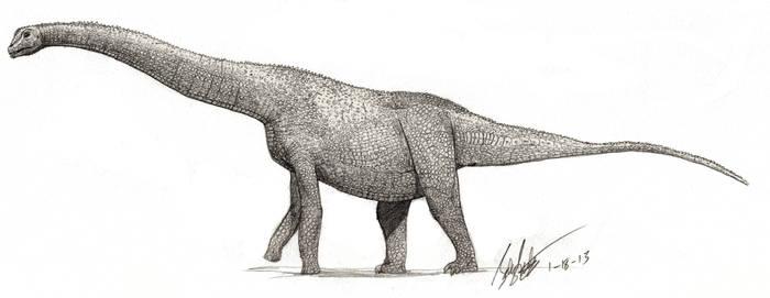 Alamosaurus (small scales) by palaeozoologist