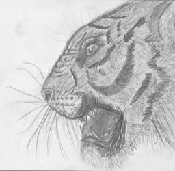 Tigerface by Jackbounces