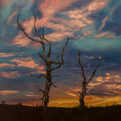 Two trees at Sunset by FrankvanderHoeven