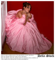 Pink Princess.7- Cornered by Della-Stock