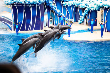 Dolphins Breaching by Della-Stock