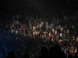 Concert Crowd by Della-Stock