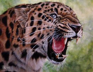 Amur leopard by Azany