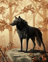 Autumn wolf by Azany