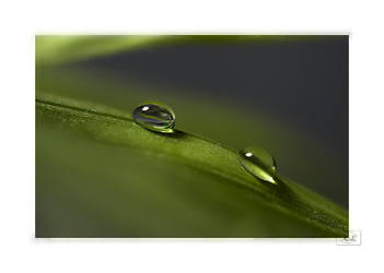 water drops by creativegrafix