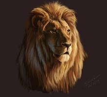 Lion by Edwardch93