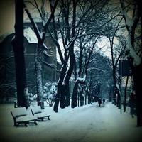 White days by DianaCretu