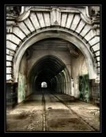 The train by DianaCretu