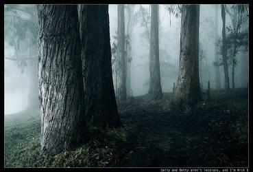 polipoli:trees.inthe.mist:2 by nick-d
