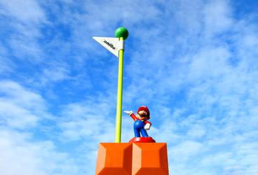 Mario at the FlagPole by kilroyart